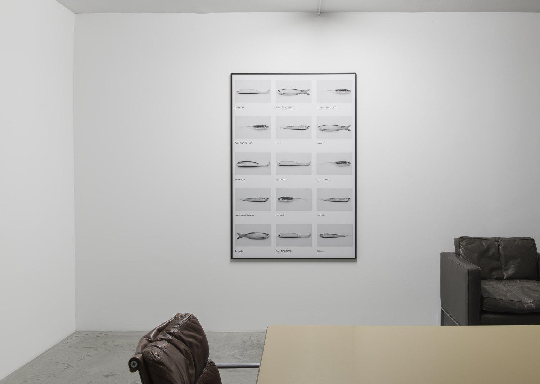 Sean Snyder Network (Les Animaux De La Ferme), 2016 Framed b/w archival pigment print on matte paper, 101 cm x 150 cm
