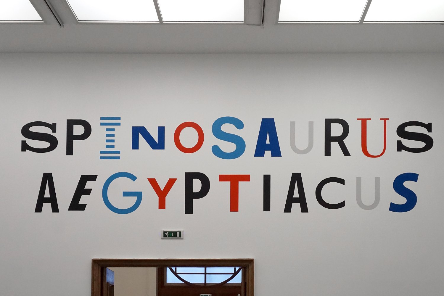 Sean Snyder Spinosaurus Aegyptiacus (Visual Identity), 2018 Painted wall (RAL 3020, RAL 5012, RAL 5017, RAL 707, RAL 9017), 135 x 500 cm