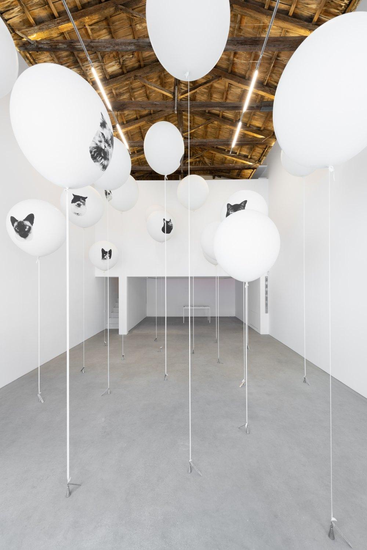 Installation view, John Knight, Headshots, a work in situ, Galerie Neu at the INTERMISSION, 2019