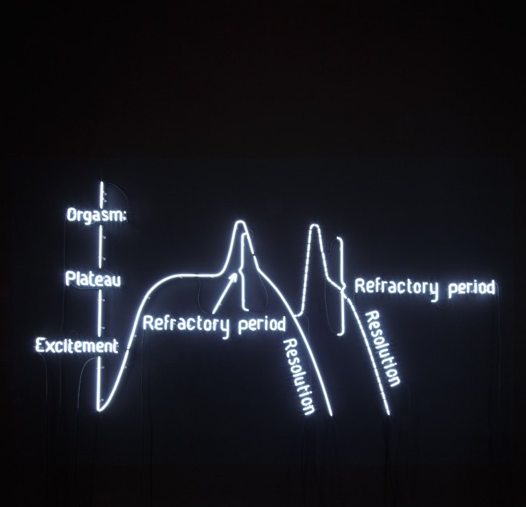 Claire Fontaine Orgasm Neon (Male), 2009 Black wall, white neon tube 6500k, cables, transformer, 300 × 400 cm
