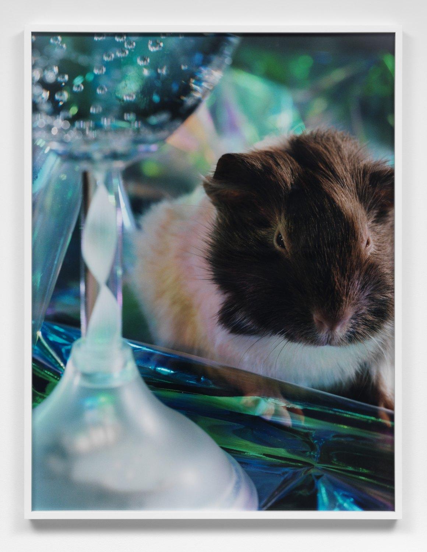 Josephine Pryde  Scale IX, 2012    C-Print,  106 × 81 × 5 cm